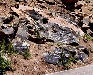 Gneiss Outcrop, Colorado's Front Range